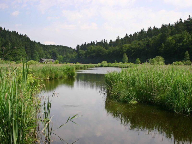 zum_dammerbauer_landschaft-umgebung20